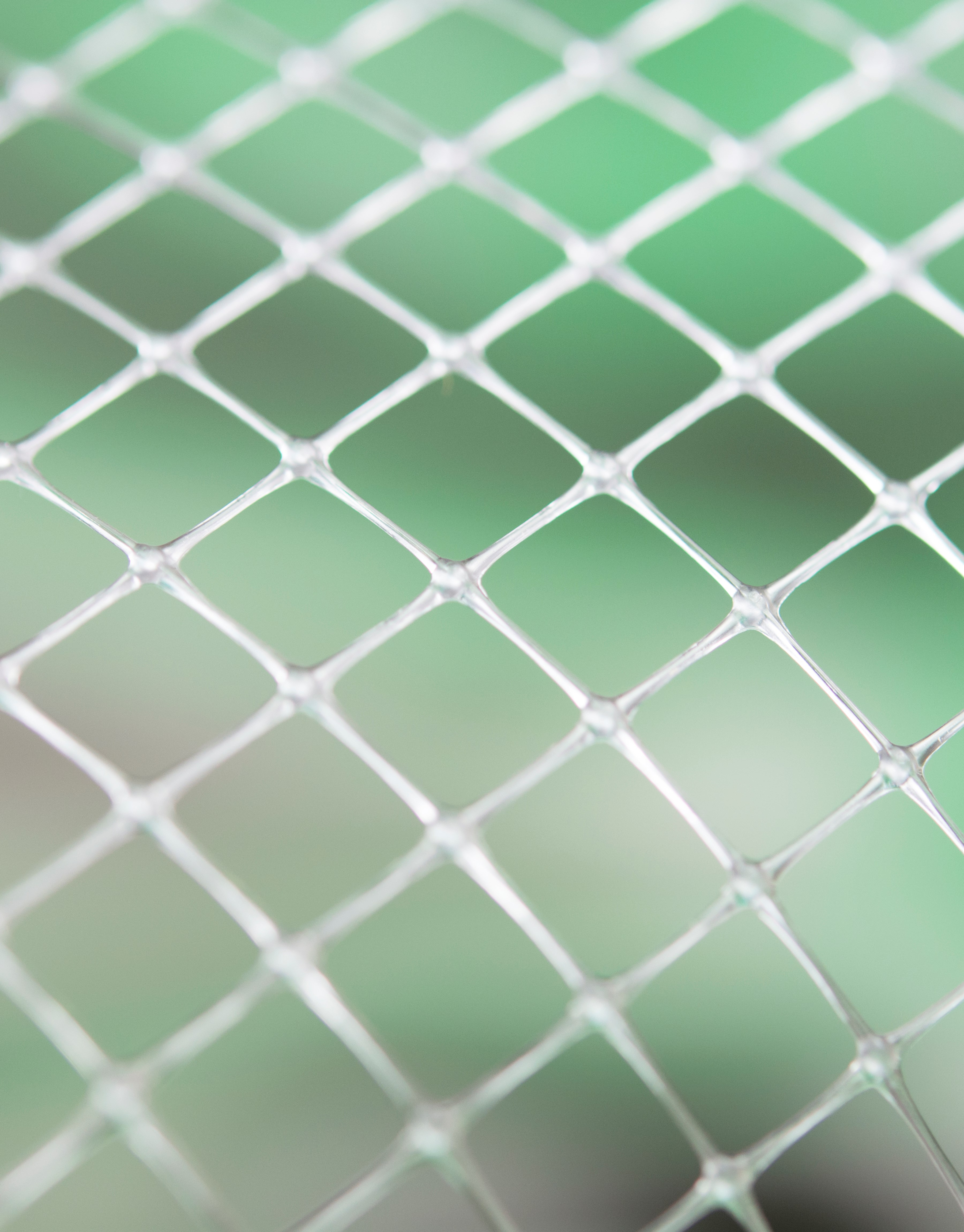 Oriented Netting