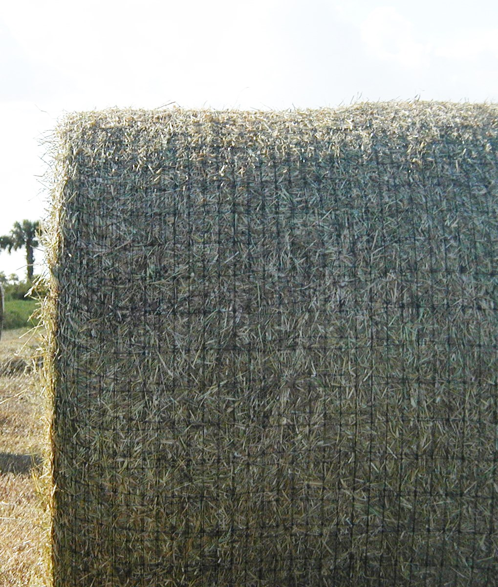 Haybale - Black net.jpg