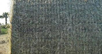 Hay Bale Netting | SWM