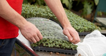 Plug Tray Netting Garden And Nursery Jpg