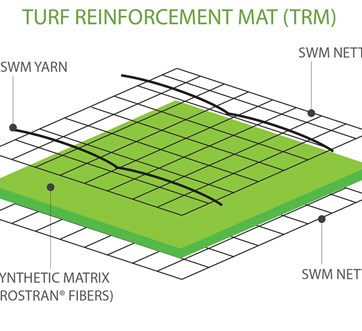 TRM-illustration-SWM-Version.jpg